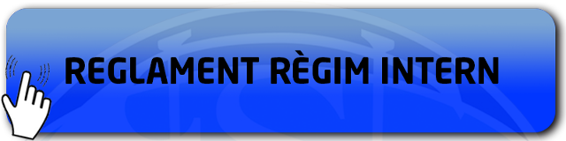 REGLAMENT DEL RUGBY